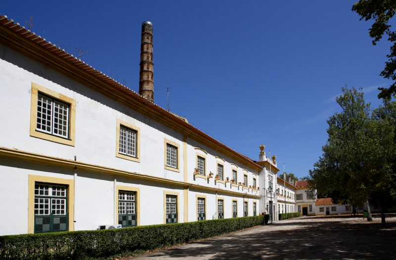 Montebelo Vista Alegre